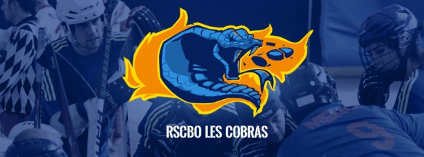 facebook-header-cobras